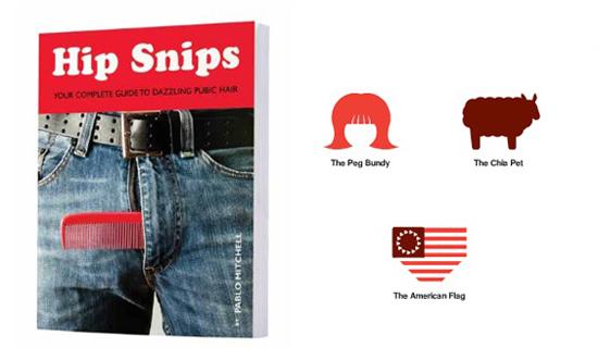 HIP-SNIPS
